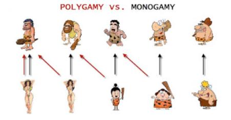 hypergamy.png